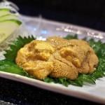 HIro's Yakko-San - Sea Urchin